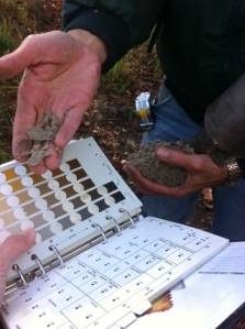 Corinne Koiro of Voorhees Township and Mark Muraczewski of Tom's River use a Munsell Color Book to identify the type of soil at their location in Pittsgrove, New Jersey.