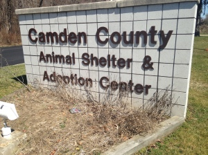The Camden County Animal Shelter is on Barnsboro Road. By Julie Costa, CCC Journalism Program