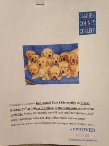 animal care club photo